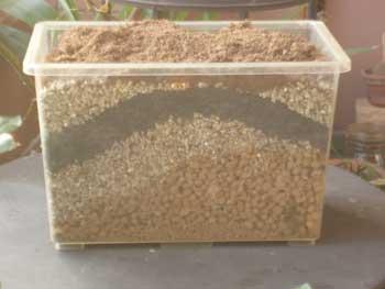 Composty
