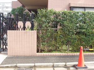 Kanjirou2