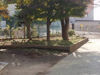 Schoolgarden