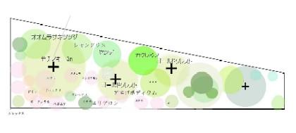 Suises_garden2_1